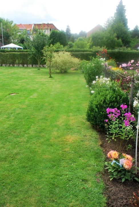 Blick Blumenbeet und Rasenlandschaft